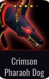 Warrior Crimson Pharaoh Dog